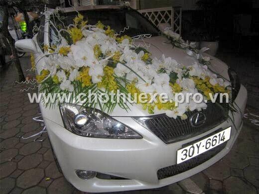 Mẫu hoa cưới Lan vàng, hồ điệp trắng VIP
