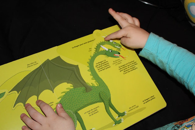 livre dragon