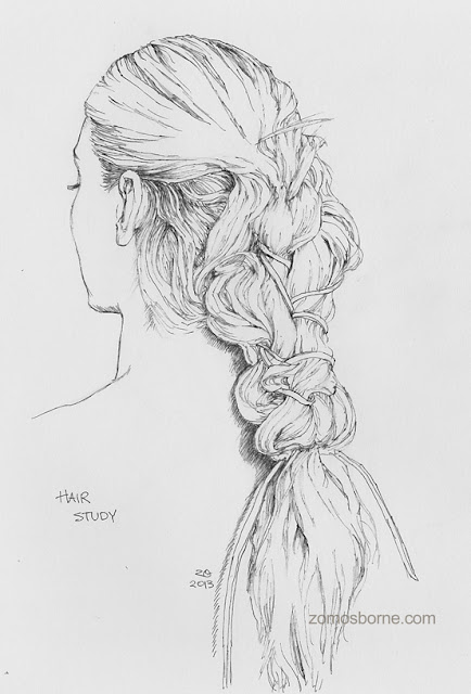 pen and ink study of hair