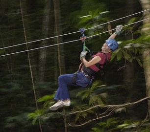 Rainforest Canopy Zip Line