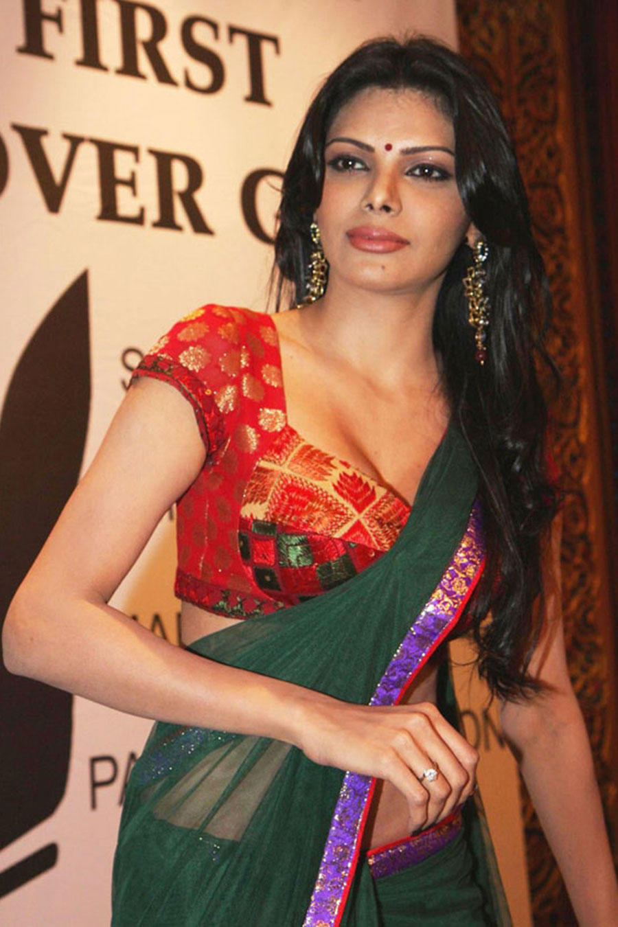 sherlyn chopra in saree hot photoshoot