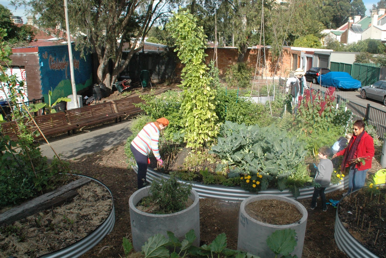 James Street Reserve Community Garden Better Homes And