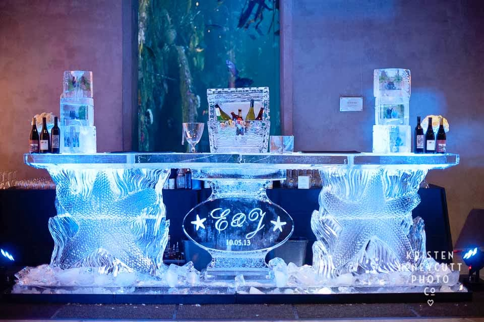 Seattle Aquarium wedding, black and white wedding, ice bar