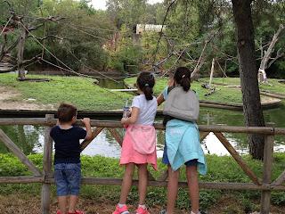 vacaciones,verano, zoo, niños, hijos, animales