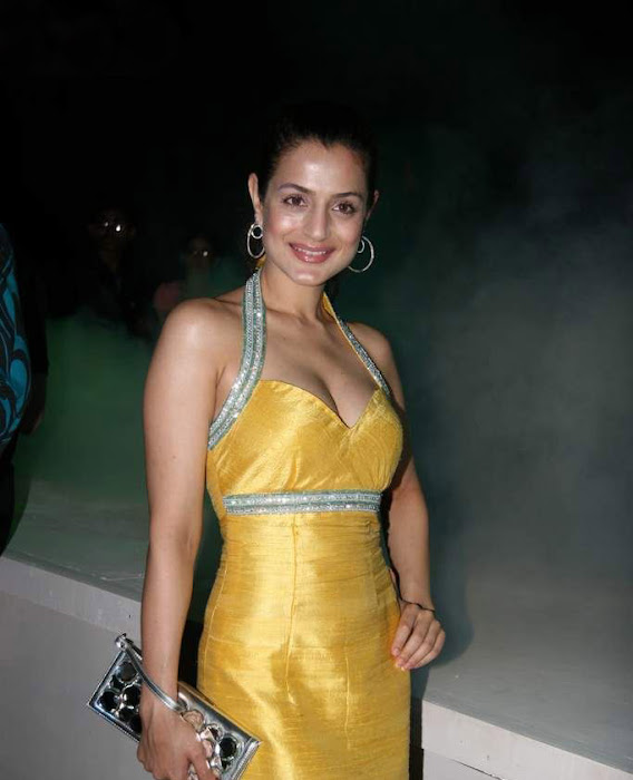 amisha patel cute stills