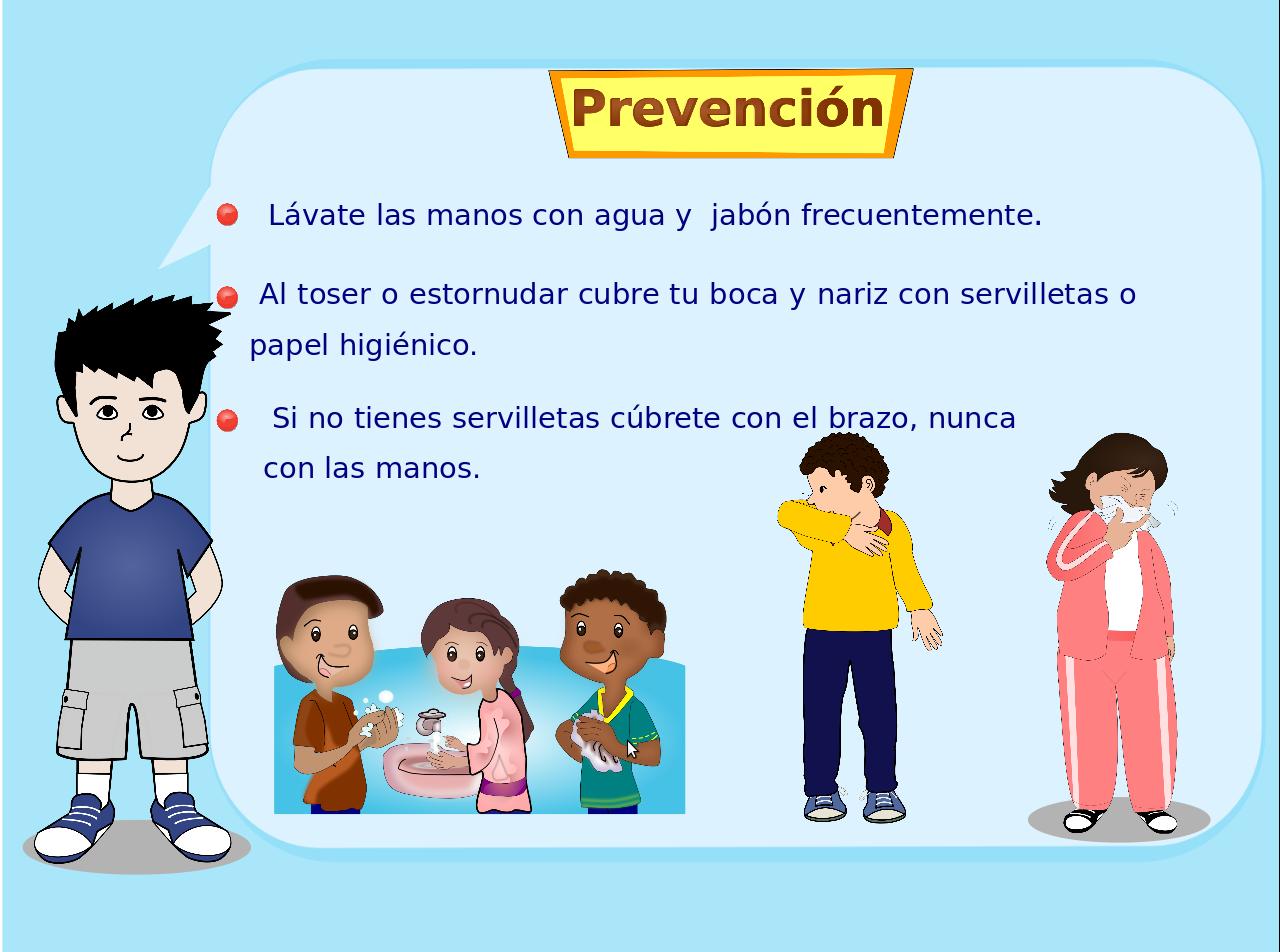 La Prevencion De Influenza