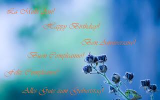 felicitari, urari, mesaje, trandafiri rosii, happy birthday, la multi ani de ziua ta, felicitari virtuale, felicitare de aniversare, felicitare de zi de nastere, felicitare de zi onomastica, felicitare de ziua numelui, poze, imagini, fotografii,