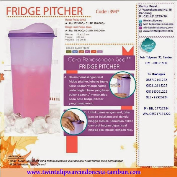 Tips Fridge Pitcher 2014