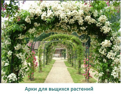 опора-для-вьщихся -растений