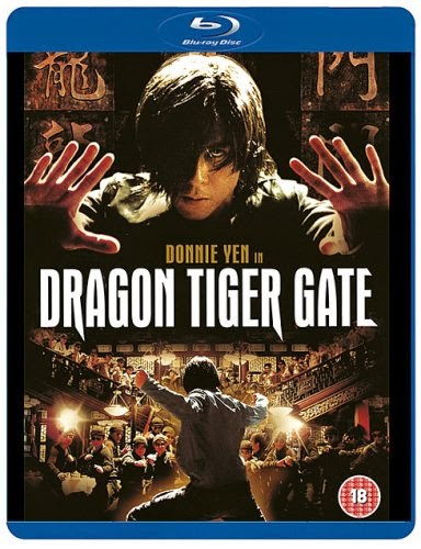Dragon Tiger Gate 2006 Dual Audio Hindi Eng BRRip 300mb 480p