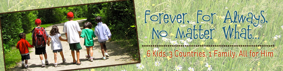 Forever, For Always, No Matter What : Catholic Adoption & Home Education Blog