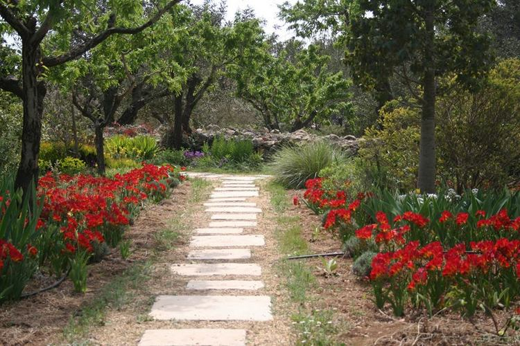 Stunning en el jardin de rosas gallery for Camping el jardin alicante
