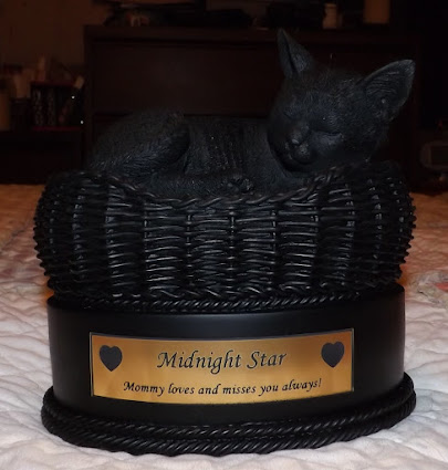 My precious Midnight