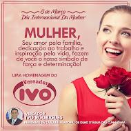 HOMENAGEM DO VEREADOR IVO