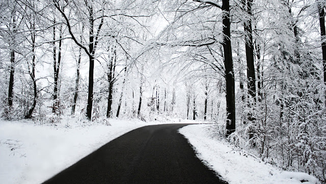 Free Download Winter Snowy Road HD Wallpapers for iPhone 5