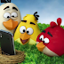 Angry Birds love Samsung Galaxy Ace Ad