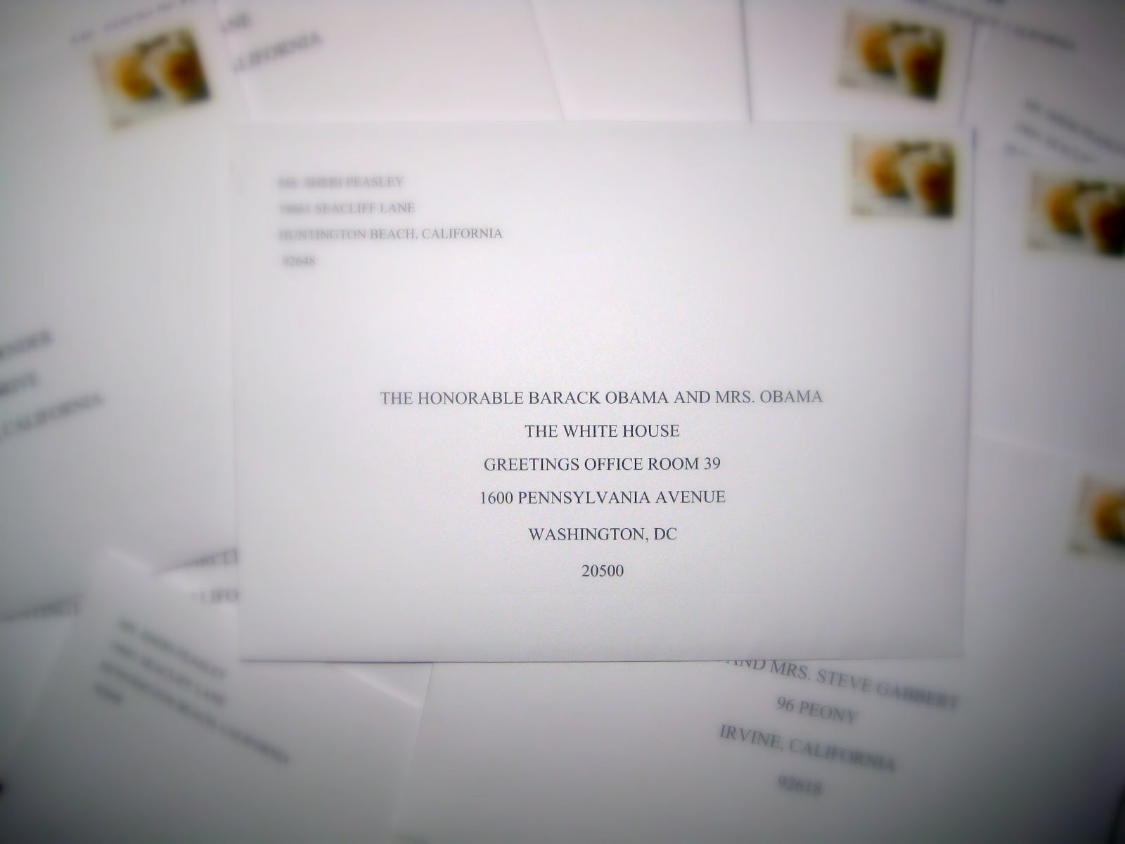 One Lucky Girl Wedding Invitation For Mr And Mrs Obama
