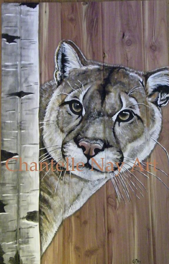 """""""Cougar on Red Cedar"""""""