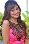 Shilpi Sharma sizzling pics-thumbnail-16