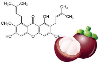 Obat Kanker Hati Herbal