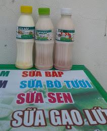 Sữa các loại 12.000đ