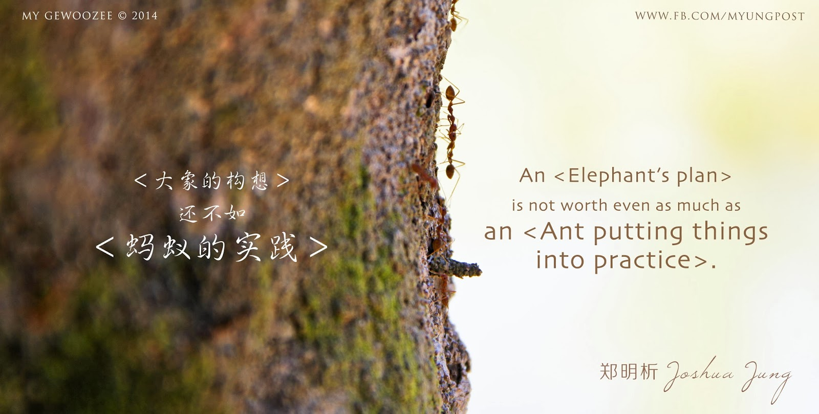 郑明析,摄理,蚂蚁,大象,构想,Joshua Jung, Providence, Ant, Elephant, Plan