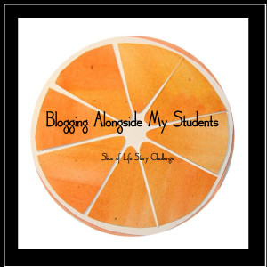 Blogging Along With My Students