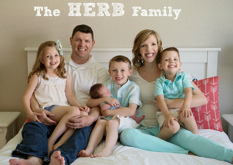 The Herb Family