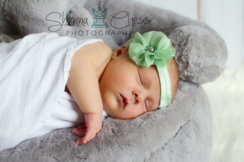 eugene, or newborn photography