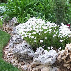 Decoraciones y mas jardines decorados con piedra en el 2013 for Jardines con piedras y troncos