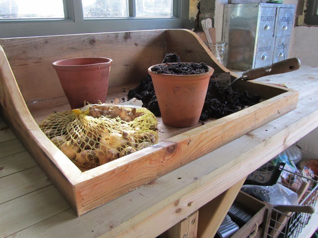 An english homestead wooden potting tray for Soil in english