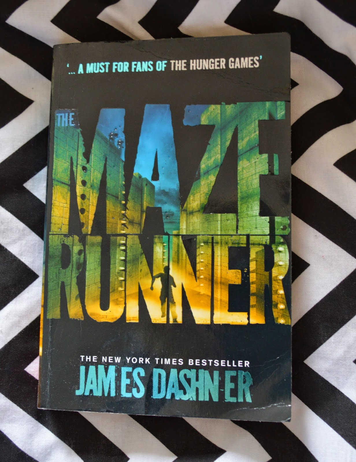 The Maze Runner, UK edition, James Dashner, review, book review, blog, photo, plot synopsis