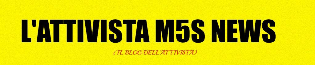 L'ATTIVISTA A 5 STELLE
