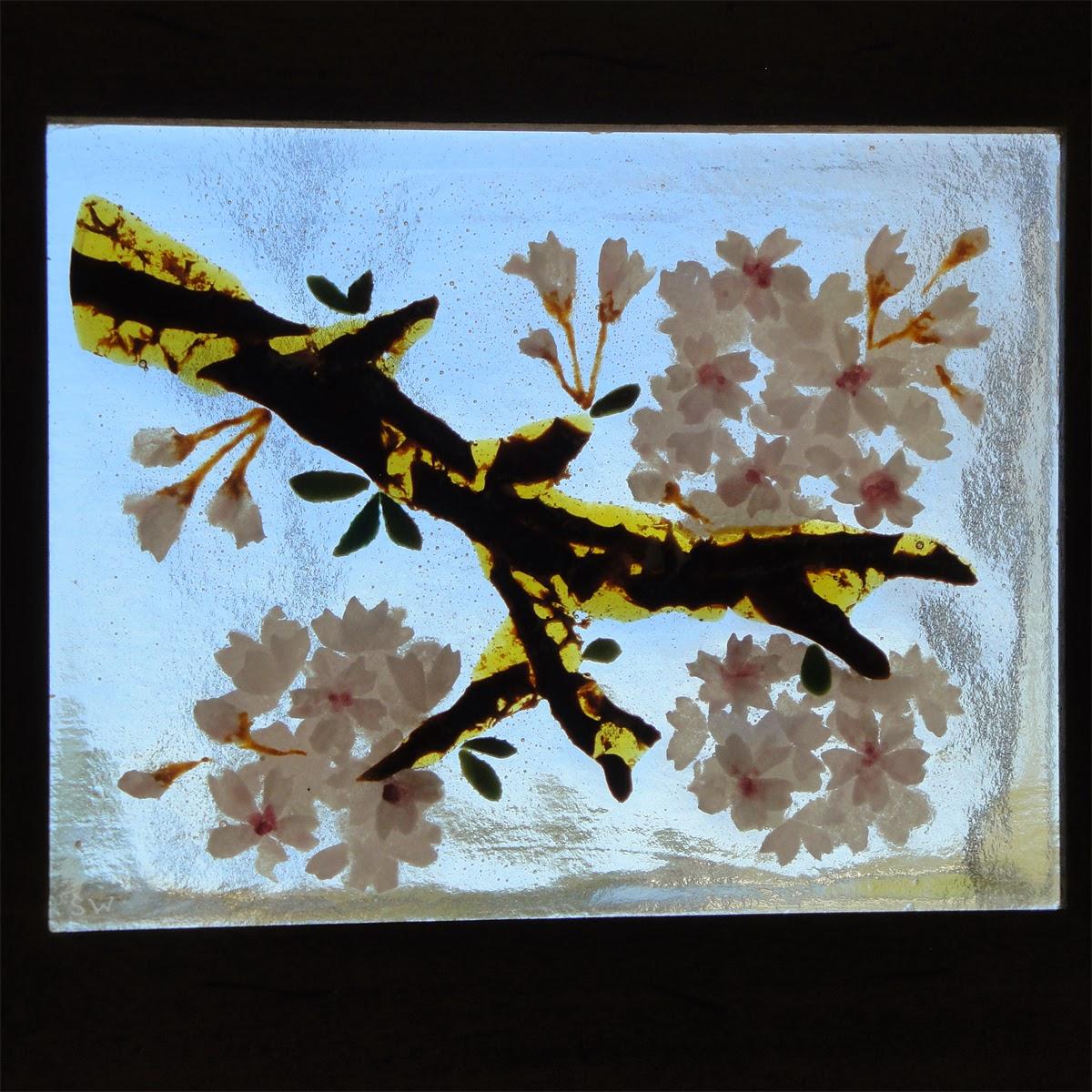 fused stained glass sakura cherry blossom flower flowers petals pink blooms on window flutterbyfoto flutterbybutterfly