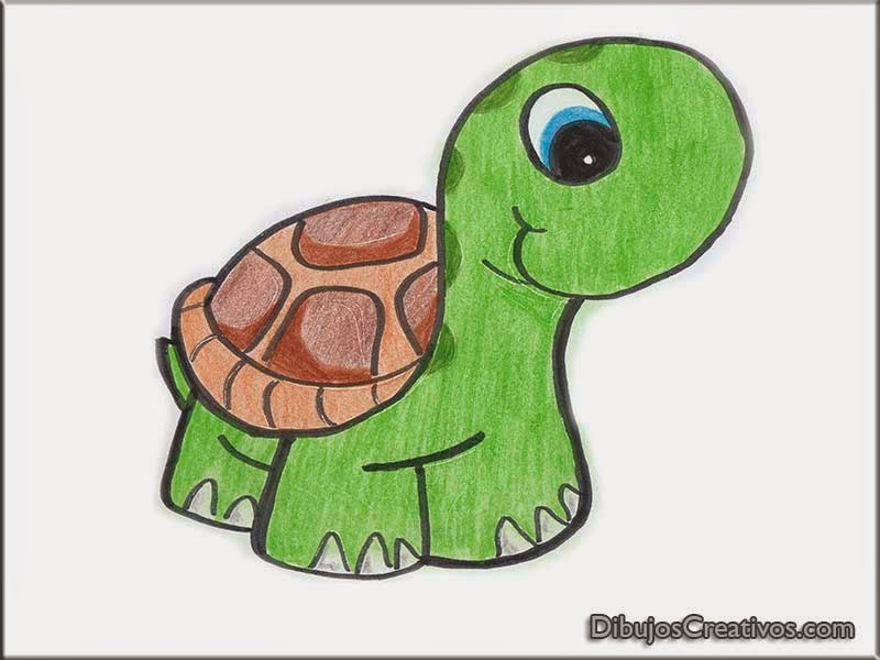 dibujos coloreados TORTUGA