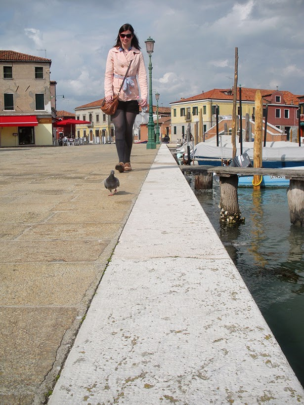 Pigeons on Murano Island, Venice