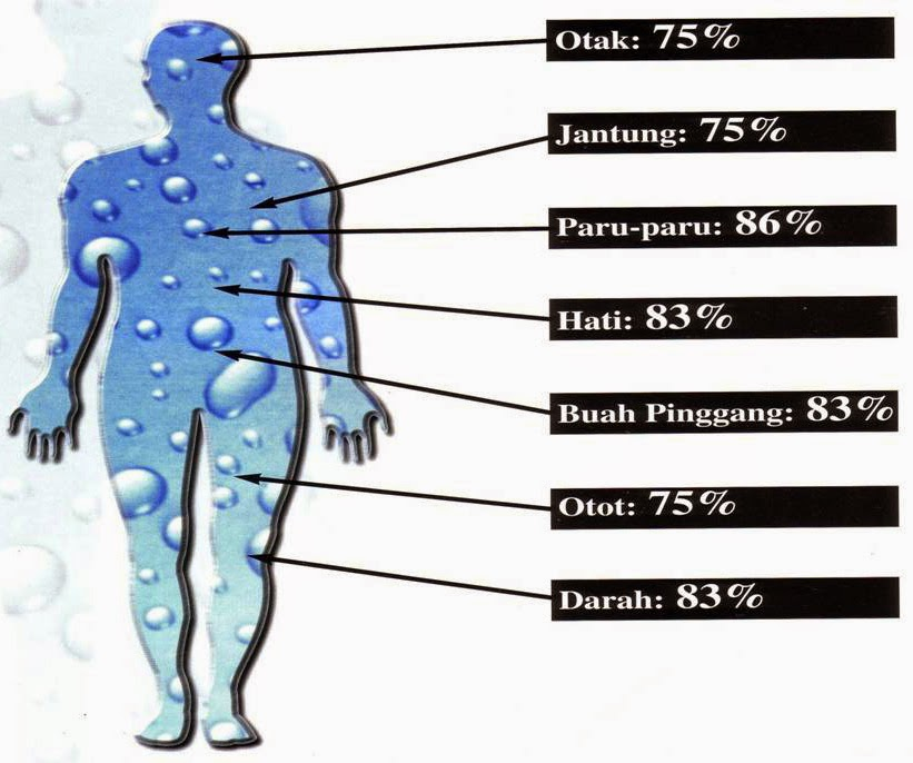 inilah deskripsi manfaat air hangat untuk kesehatan organ tubuh