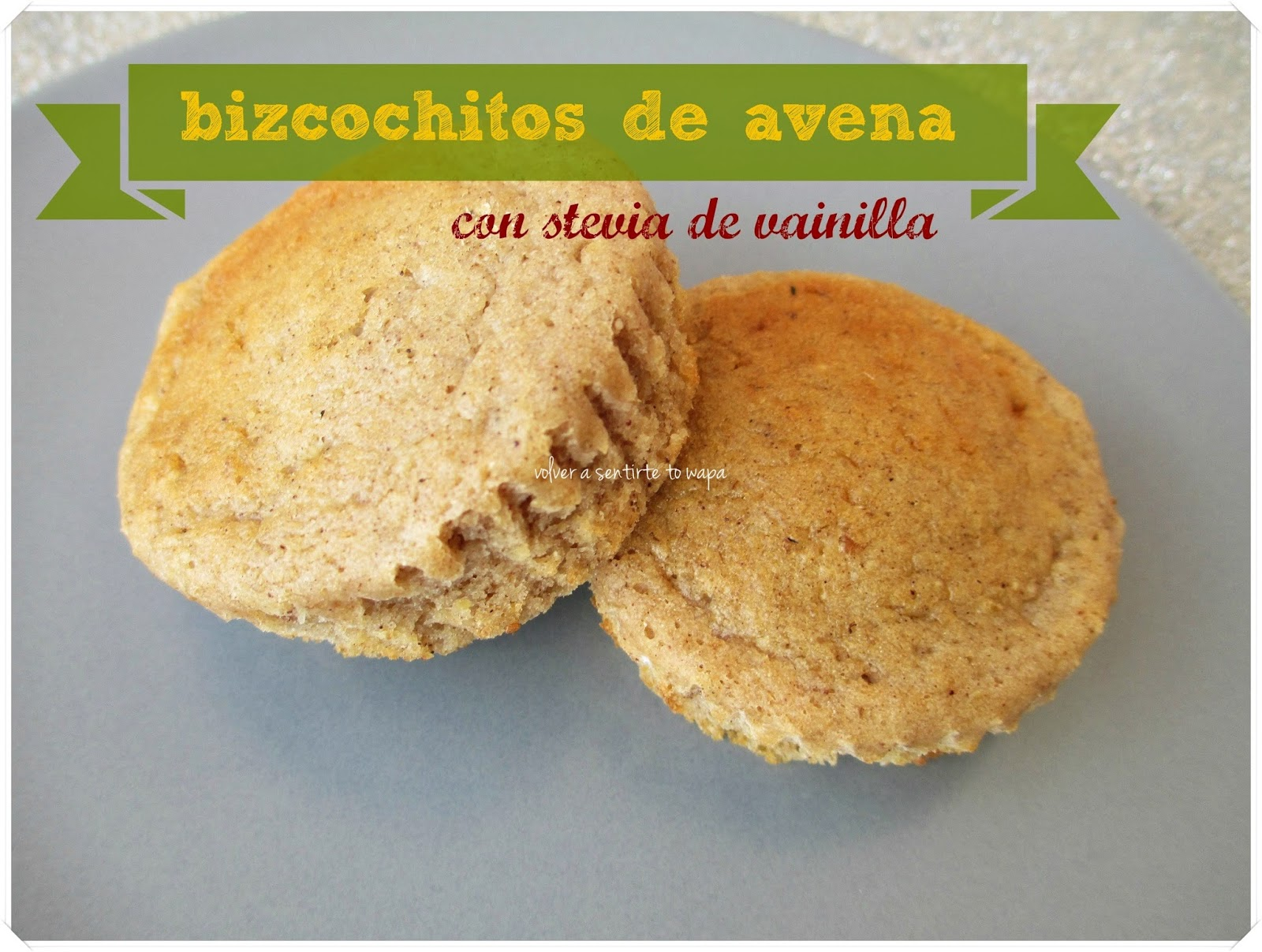 Bizcochitos de AVENA con STEVIA de VAINILLA