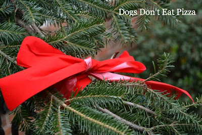 Garland with ribbon - Dogs Don't Eat Pizza