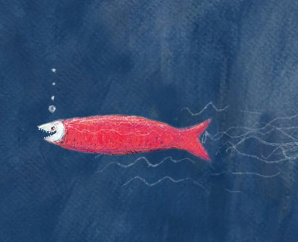 Marcela calder n ilustraciones en contra de la corriente for Nadar contra la corriente