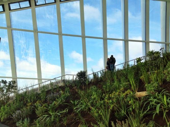 Sky Garden at the Walkie Talkie
