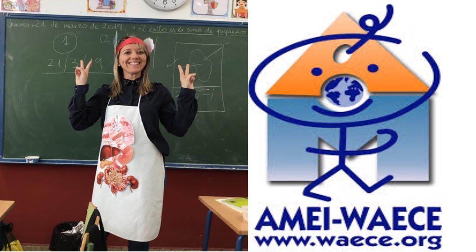 AMEI-WAECE