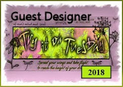 Proud Guest Designer at TioT