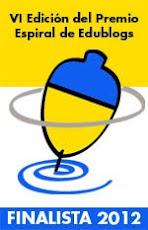 Finalista Premio Espiral 2012