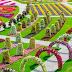 """Taman Bunga Terbesar Di Dunia """"Di Negara Padang Pasir :Dubai"""""""