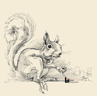dessin écureuil mignon