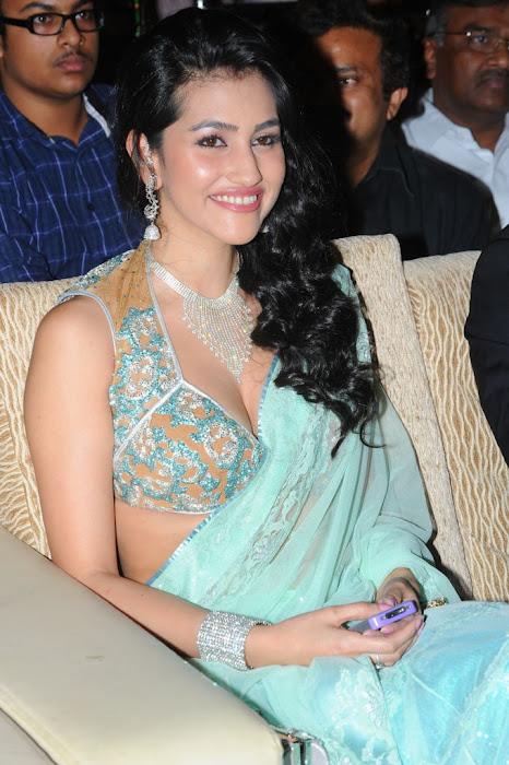 anjali lavania from panjaa audio launch, anjali lavania spicy actress pics
