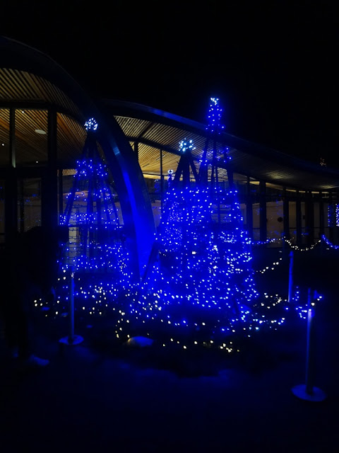 vandusen botanical garden festival of lights