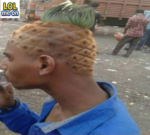 pineapple head - funny picture with caption