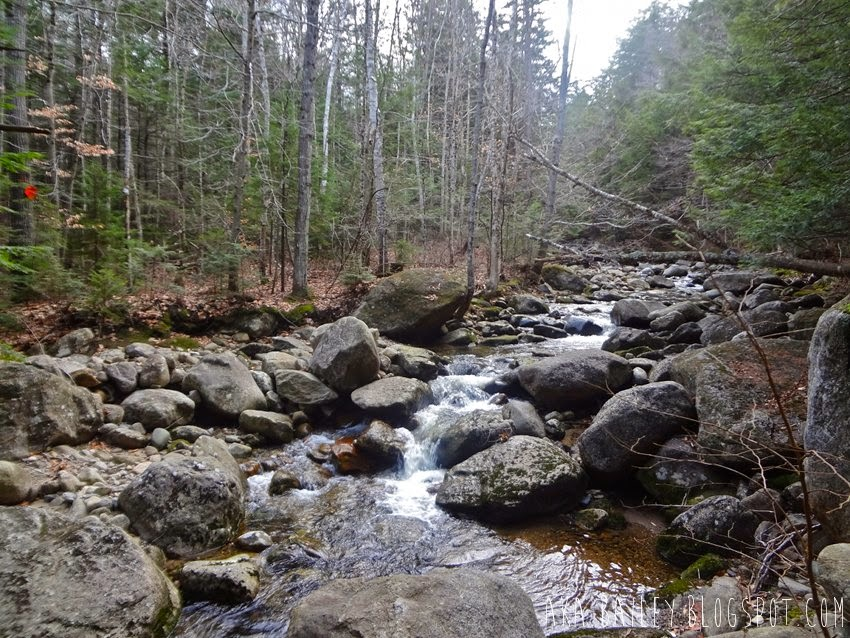 Crossing a stream while hiking in the woods near Cardigan Mountain